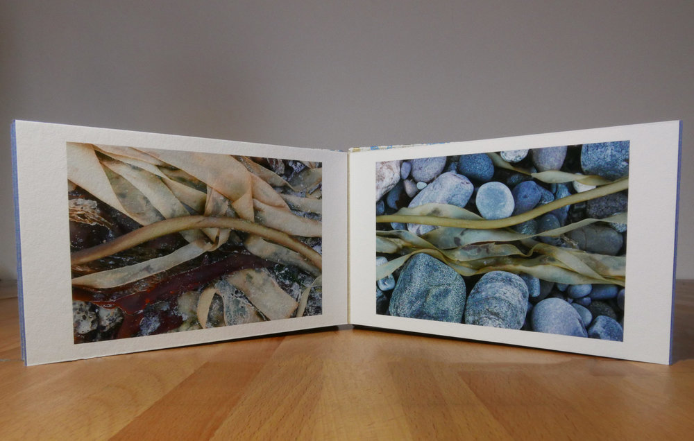 Hough Bay artists' flag book with folded pages.
