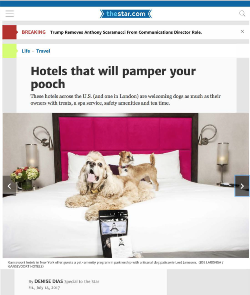 Hotels that will pamper your pooch TORONTO STAR