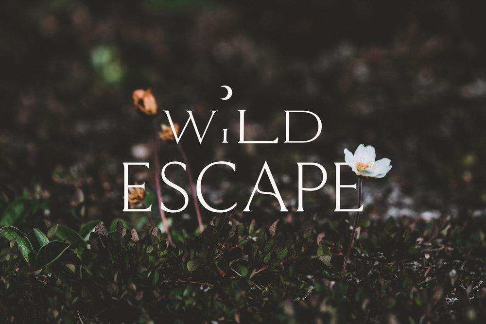 WildEscape-annie-spratt-unsplash.jpg