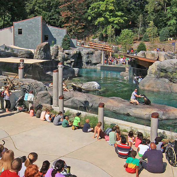 SNZP New Seal & Sea Lion Exhibit