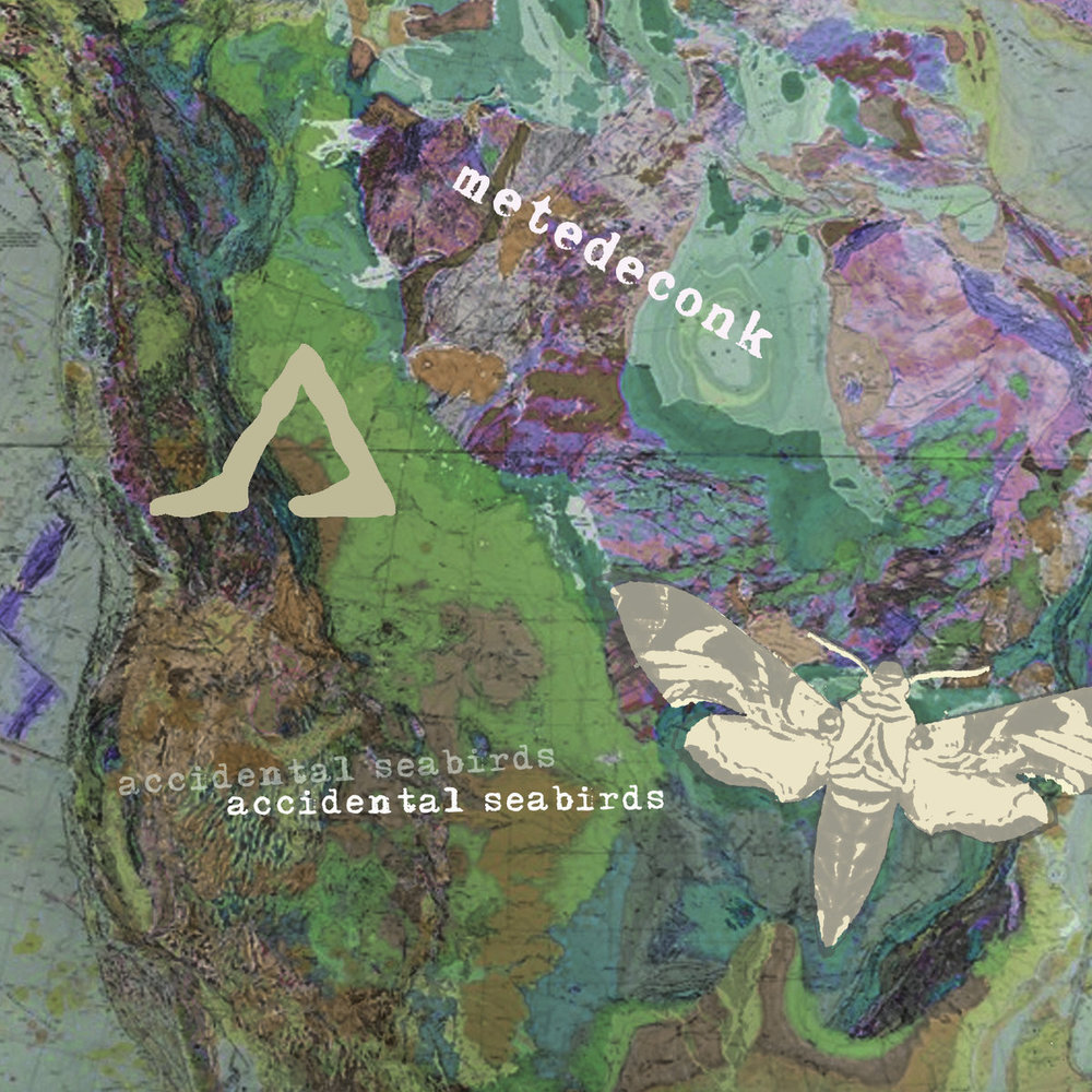 8/3 Accidental Seabirds & The Porchistas