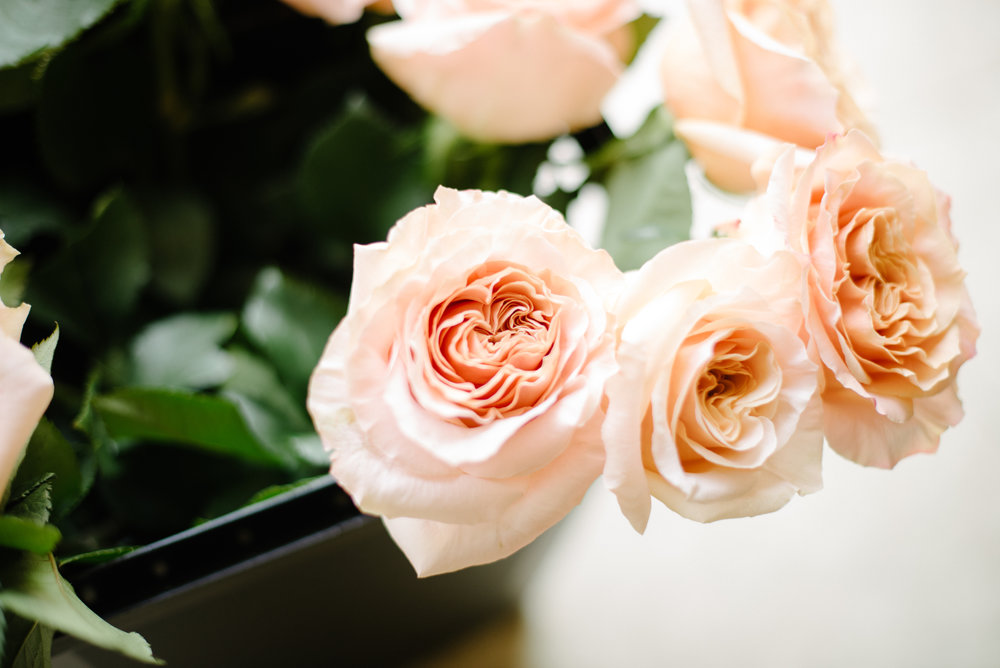 Services - It is my goal with Fleurish to exemplify the belief that anyone in the wedding industry must love to serve. It is, after all,your special day.