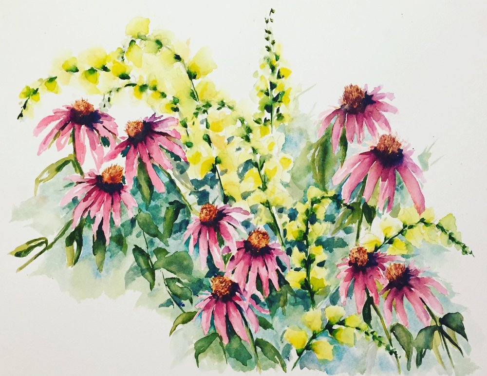 Watercolor echinacea & snapdragons painted by me // Summer 2017