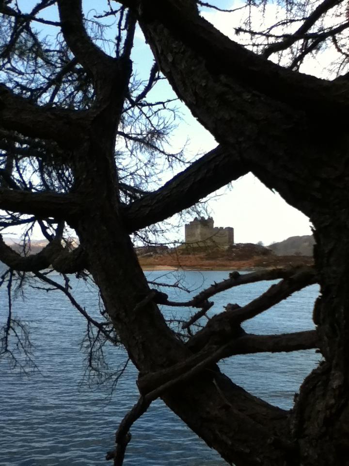 Castle Tioram -  Tour & Walk in small groups - Roaming Scotland..jpg