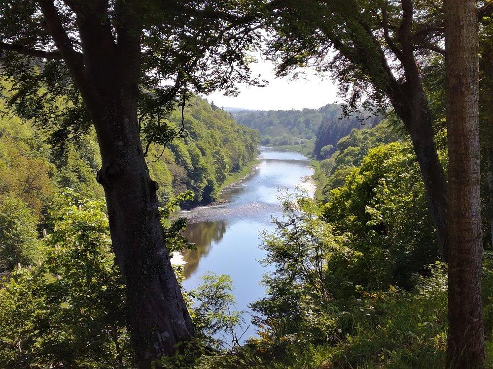 River Tweed, Scottish Borders, Scottish tours with walks, small group adventures, Roaming Scotland.jpg