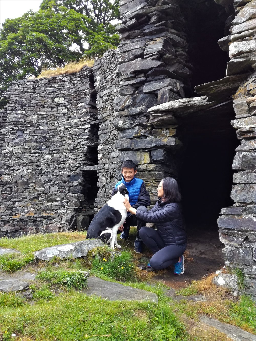 Enjoying Sparkie the collie at the Glenelg brochs.