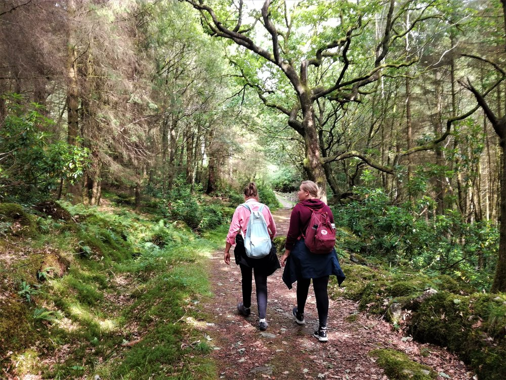 Walk to Bracklinn waterfalls, Callander -  Tour & Walk in small groups - Roaming Scotland..jpg