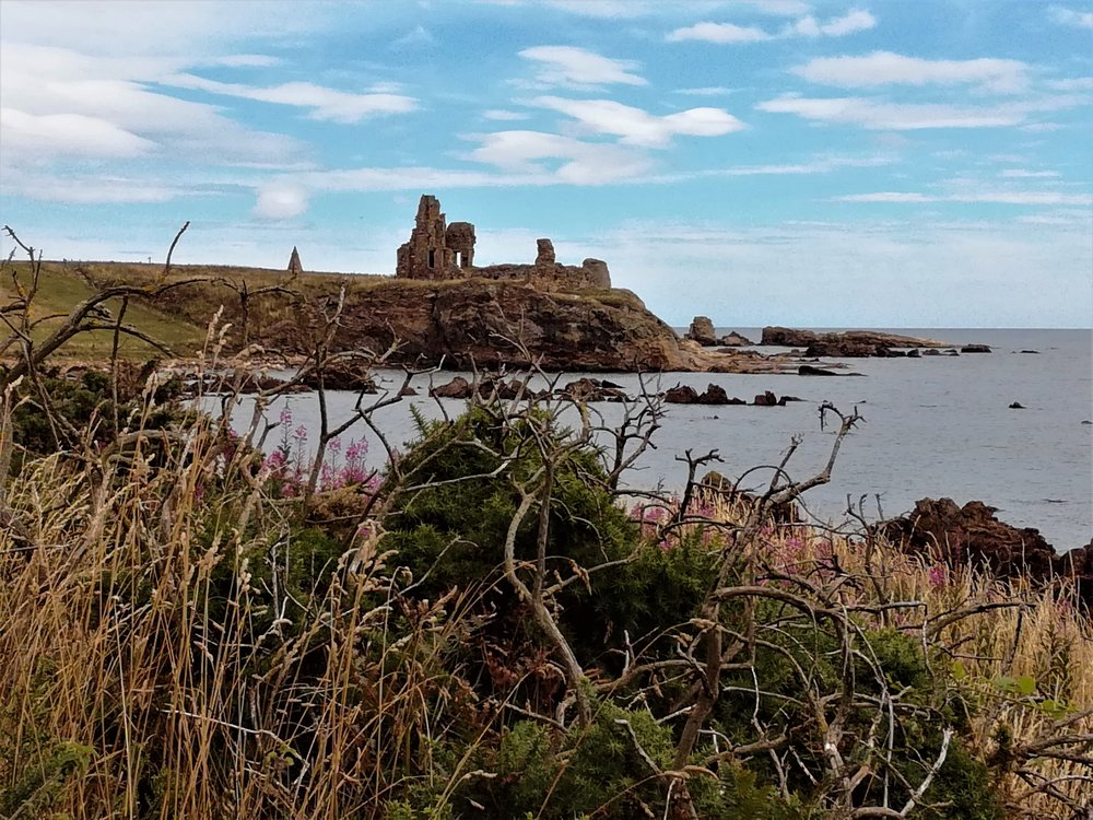 The coast has a lot of history from ruined castles, watchtowers, windmills and a cave used by a Celtic monk, all of which can be closely inspected, led on foot for 90 minutes or more by your own guide.