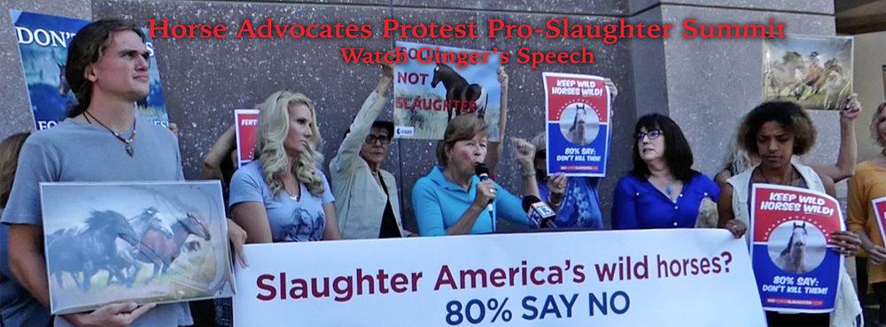 speech-banner.jpg