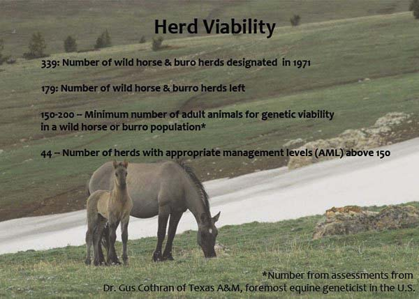 HerdViability.jpg