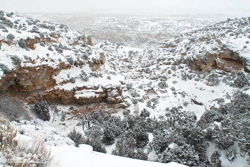 Snow is falling on day one when we spot a small group of mule deer making their way across a rocky hillside.