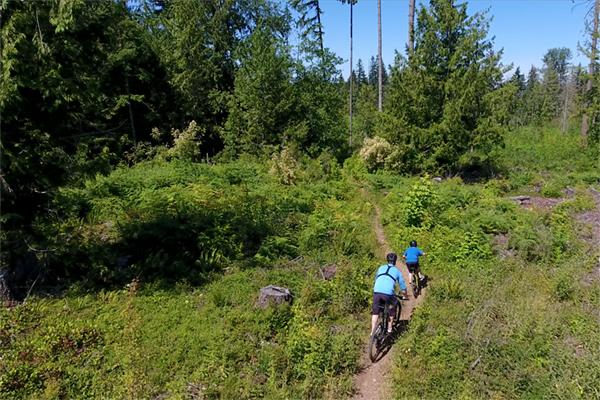 Trails Everywhere - walking, hiking or biking