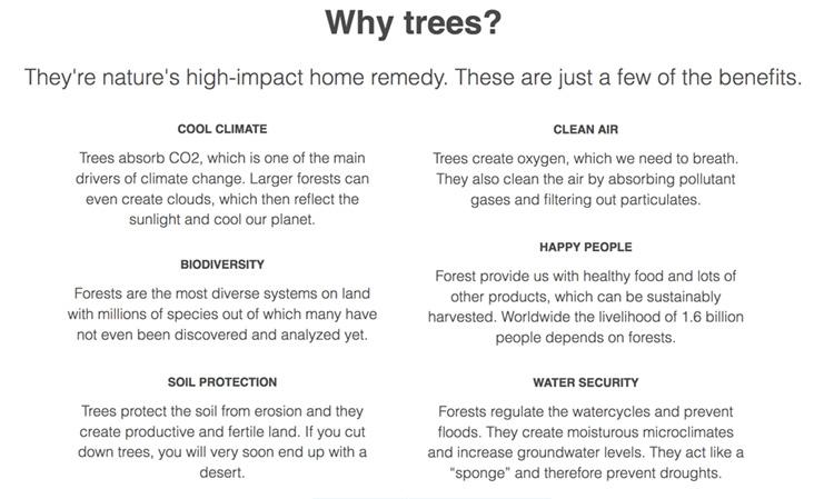 ecosia-trees-1.jpg