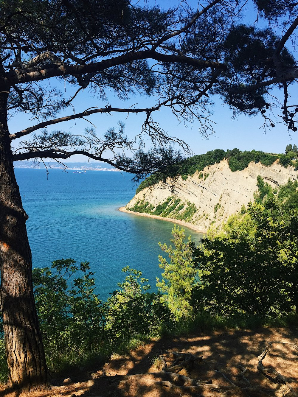 Mesecev Zaliv Beach, Strunjan National Park, Slovenia | Helena Alyssa