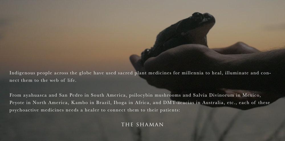 ShamansOfTheGlobalVillage_EPK_v011c.jpg