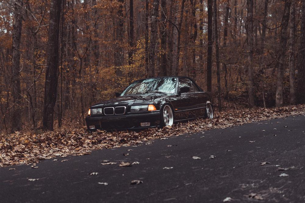 Homer's BMW-6.jpg