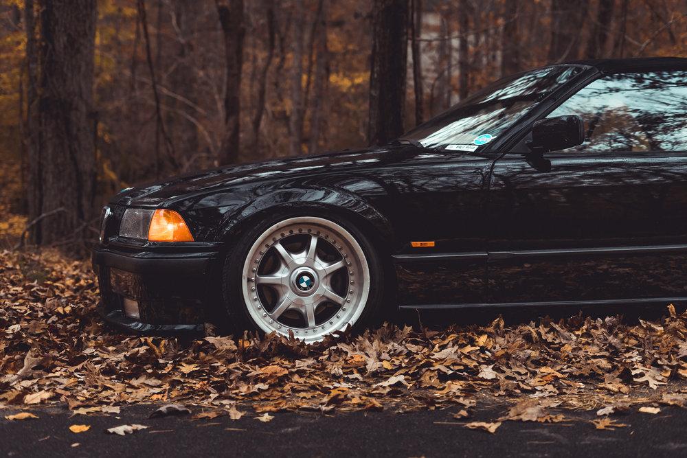 Homer's BMW-8.jpg