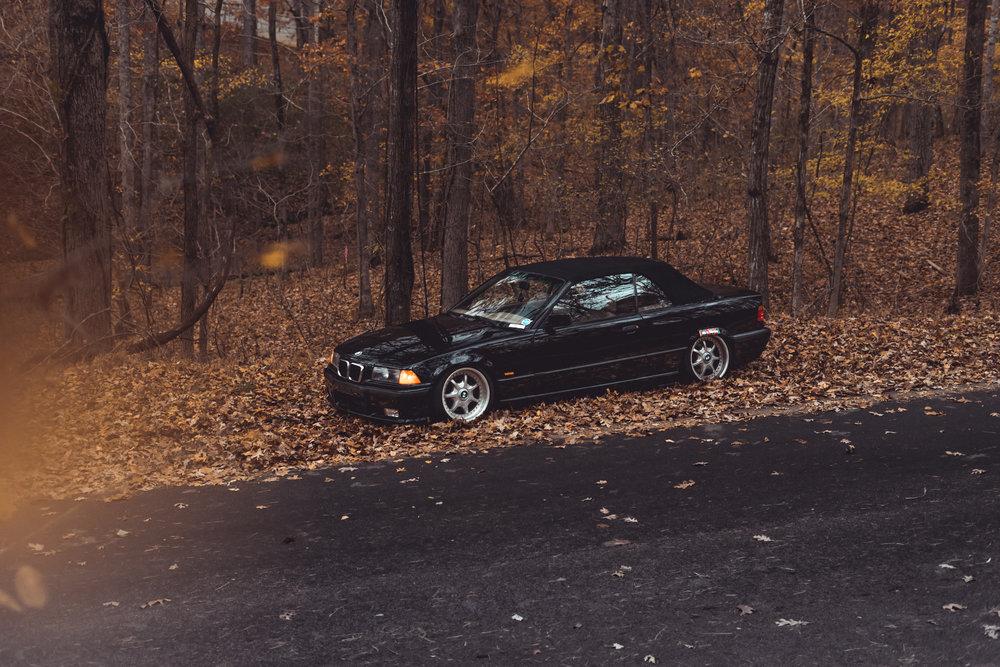 Homer's BMW-11.jpg