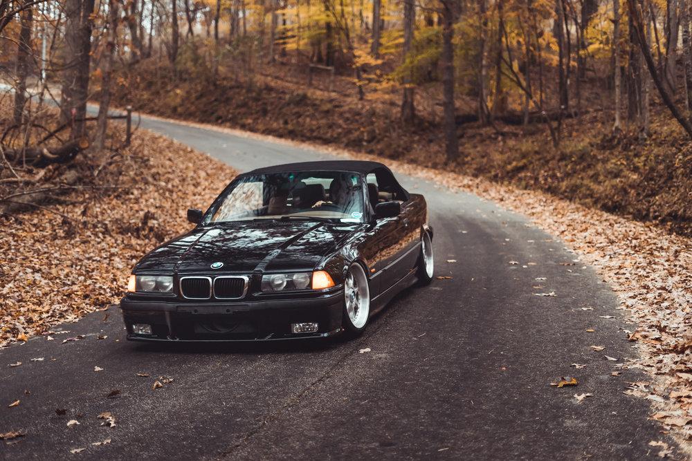 Homer's BMW-12.jpg