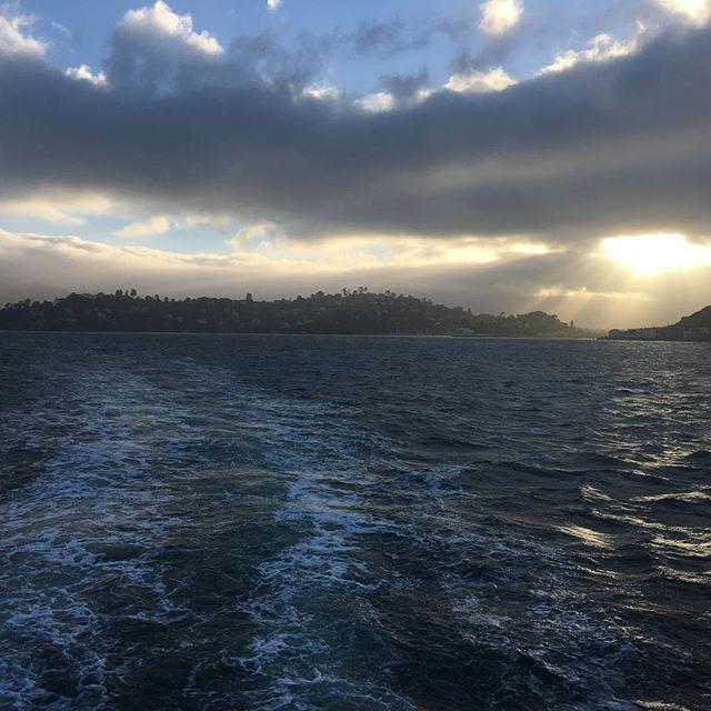 A shot I grabbed quickly last night during our Angel Island Cruise in Tiburon. @angelislandferry @destinationtiburon #batw #bayareatravelwriters