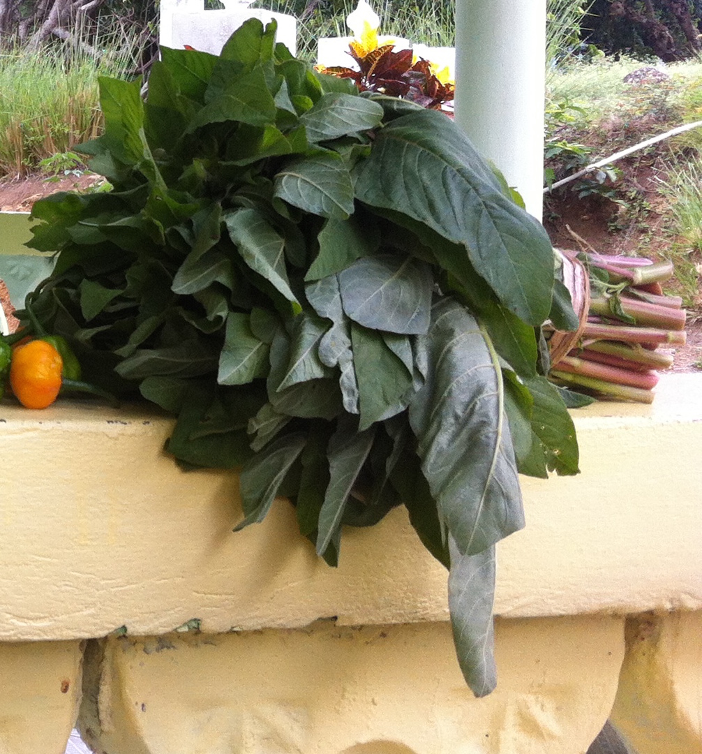 A bundle of callaloo.