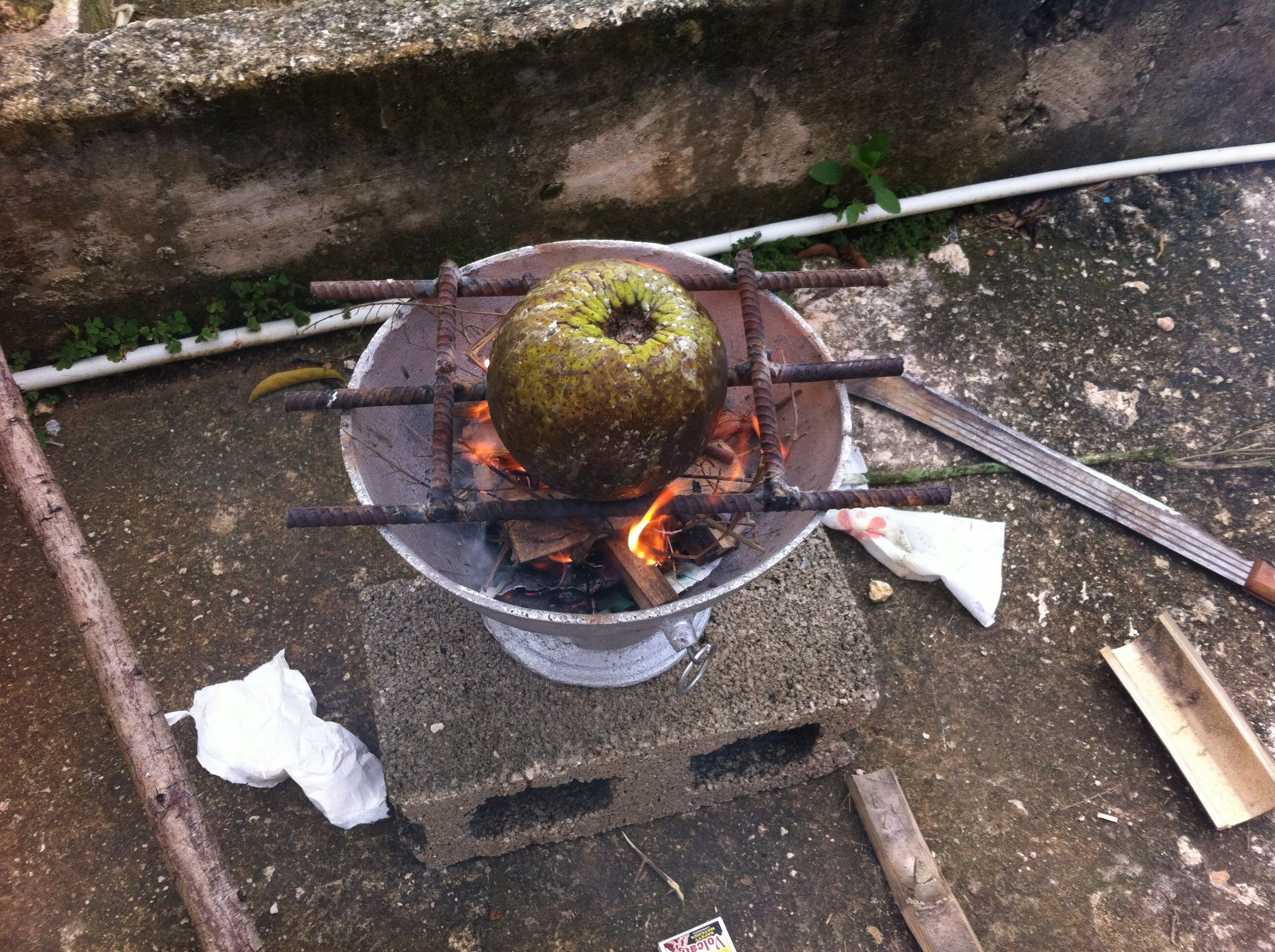 Roasting some breadfruit!