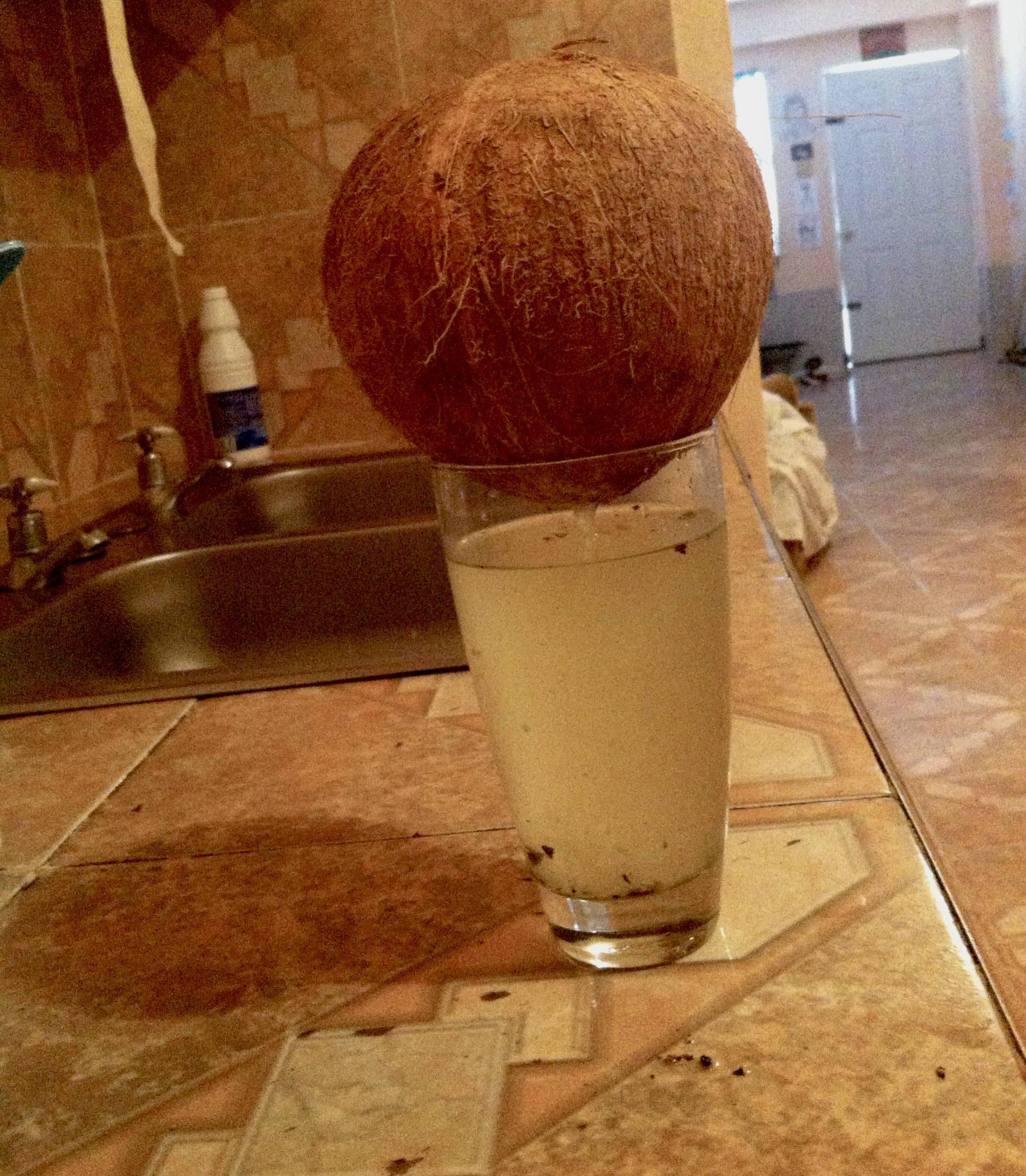 The best part of making coconut milk is you get to drink all of the water first.