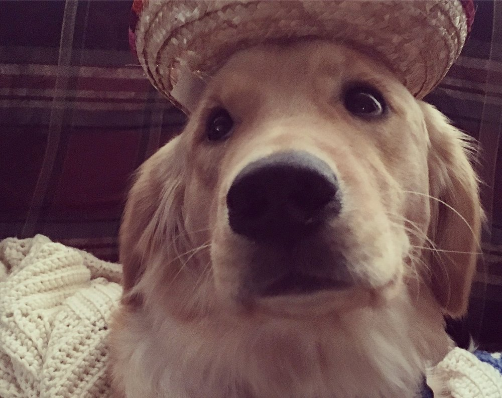 Sam is concerned about his new sombrero
