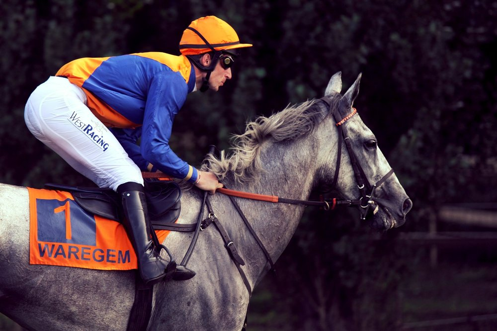 Grote Steeple Chase -