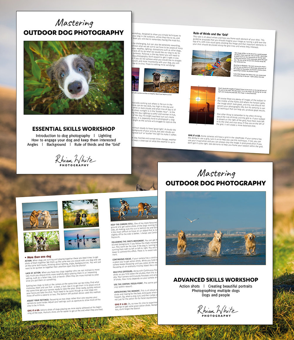 "Guides included - You will receive two 8-page booklets containing all the information from the workshop, so you don't need to take notes. You will also receive a tech sheet with settings. PLUS you get exclusive access to my new private Facebook group for people who have done the 1-1 with me ""Mastering outdoor dog photography"" where you can share images, get feedback, talk to others who love dog photography too and get ongoing feedback and help from myself."