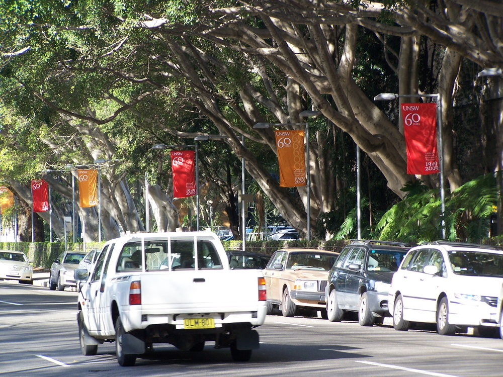 UNSW Flags.JPG