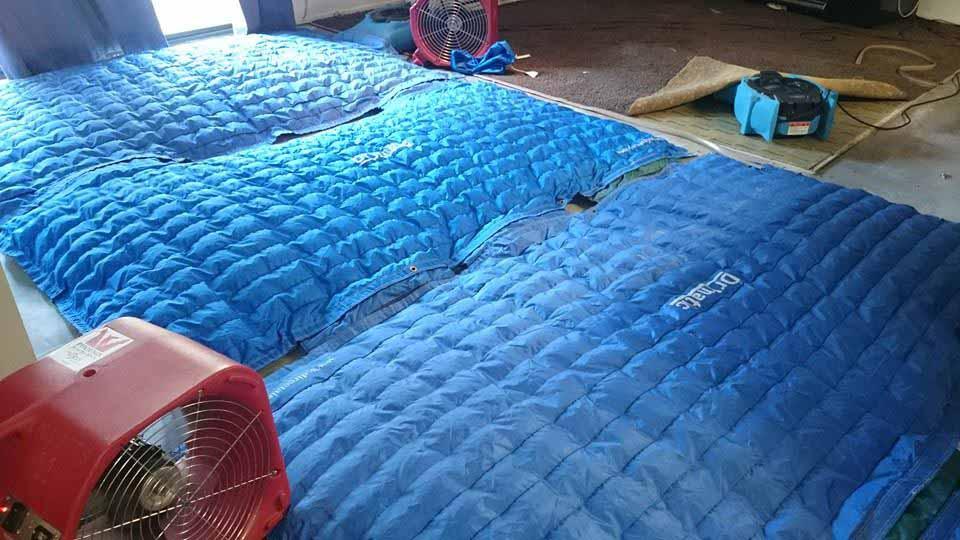 Drymatic Floor Mats23.jpg