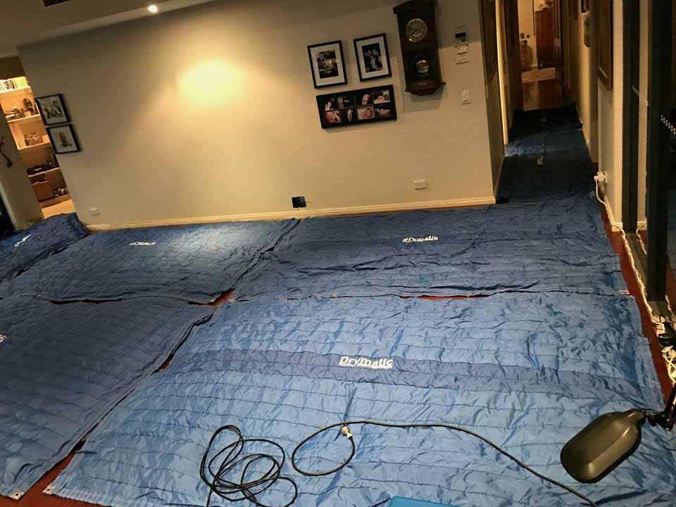 Drymatic Floor Mats73.jpg