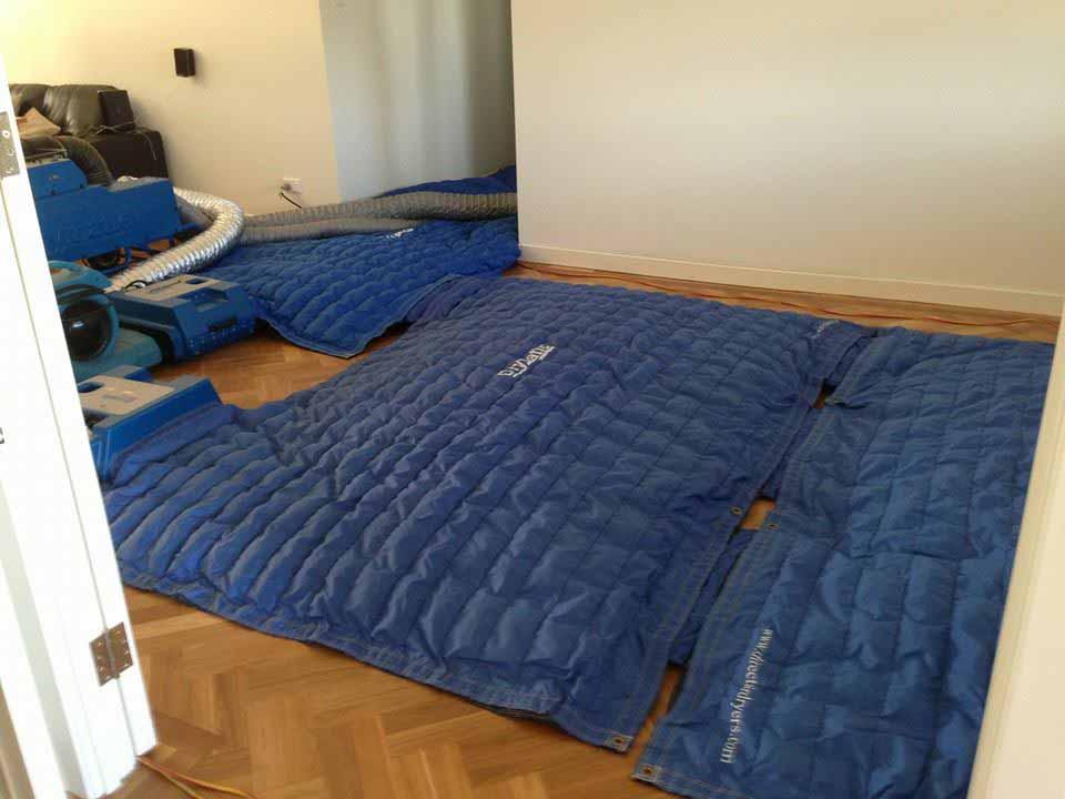 Drymatic Floor Mats87.jpg