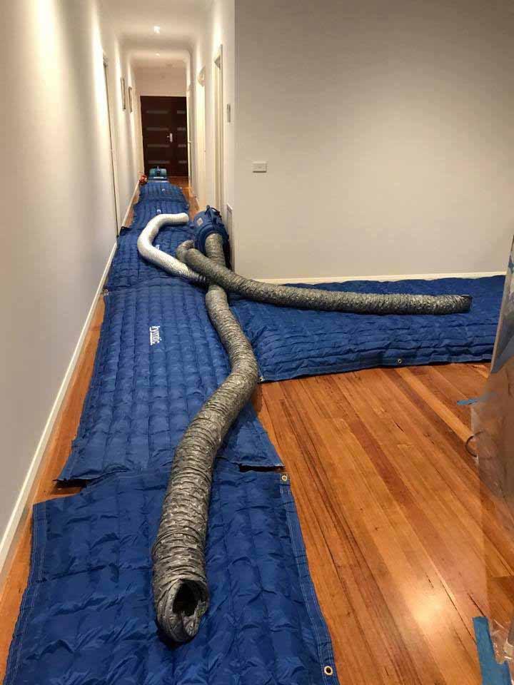Drymatic Floor Mats117.jpg