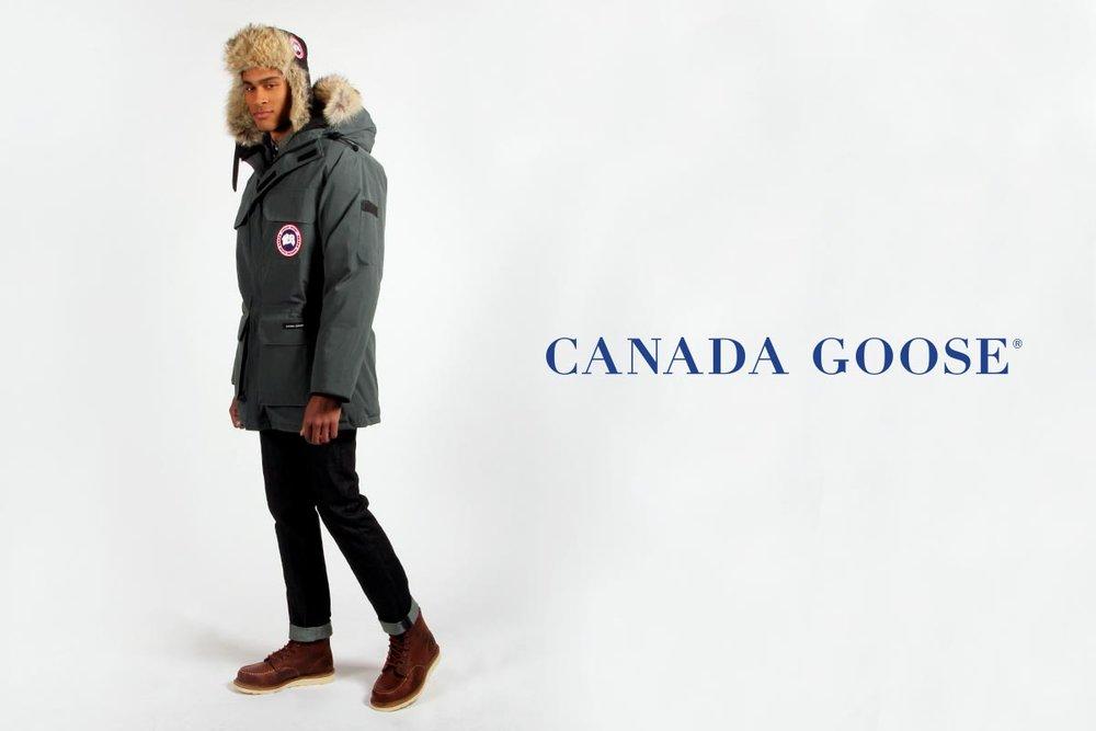 canada_goose_expedition4.jpg