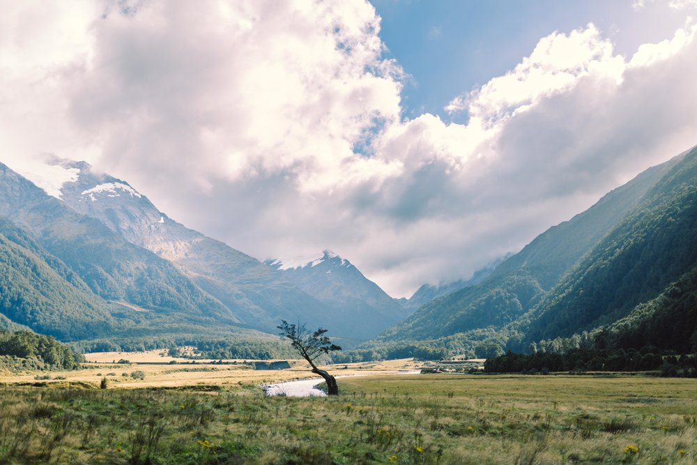Mount Aspiring National Park - New Zealand, 2018