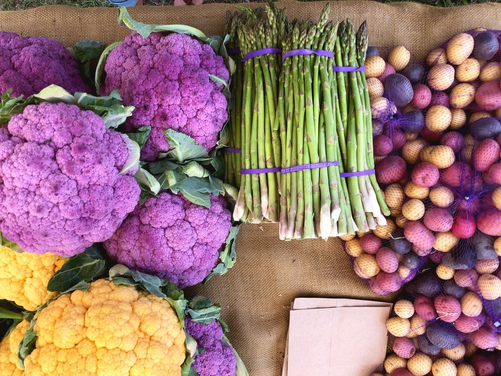 Farmers Market vs. Grocery Store - Pictured is just one of many farmers market booths we have visited that boasted Non GMO vegetables and products. All of which were picked that morning and were more colorful then anything in a mainstream grocery store.  Getting to meet the people who raise your food is one way to help keep transparency in our food industry. You may find yourself spending a few more dollars a week on your grocery bill but you will develop friendships and healthier lives along the way.