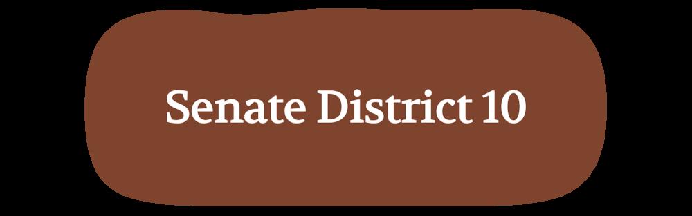 HERO---Senate-District-10.png