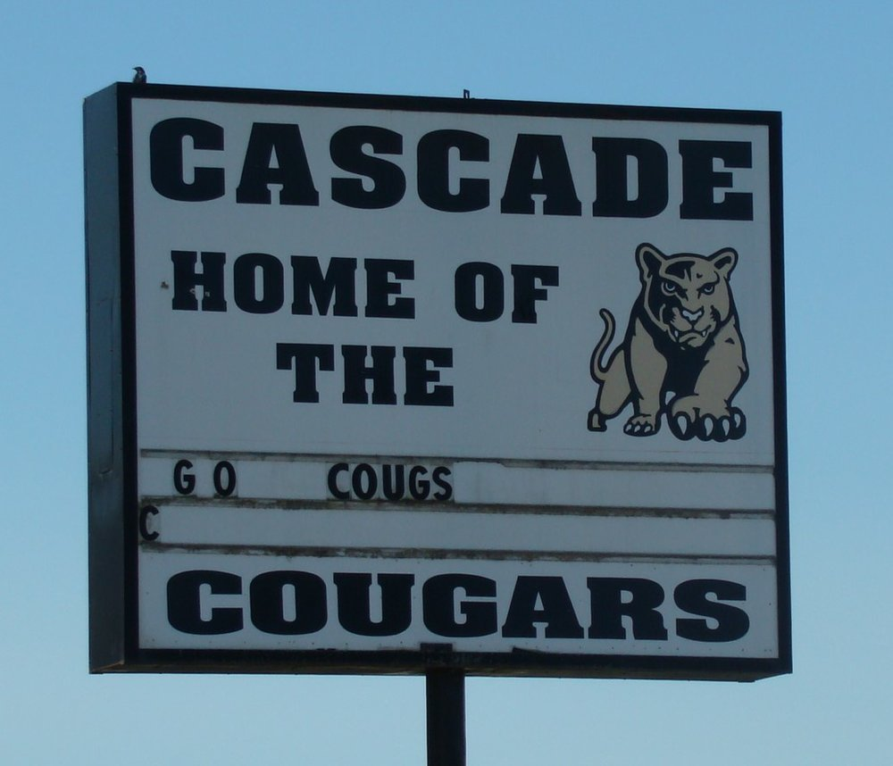 District 10 - Cougars.JPG