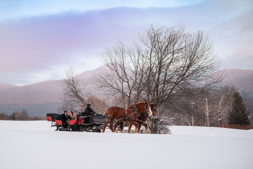 What could be more romantic than a sleigh ride in the snow as Photographed by Steve Holmes.
