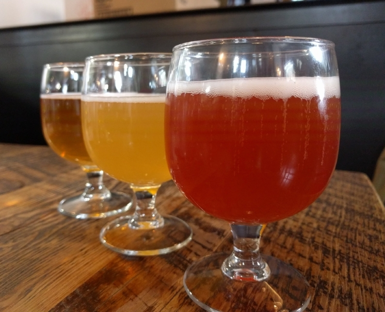 Three beer tastes at Great Divide Brewing in Denver