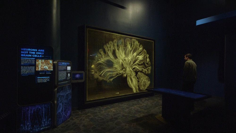 Greg dunn looking at brain art.jpg
