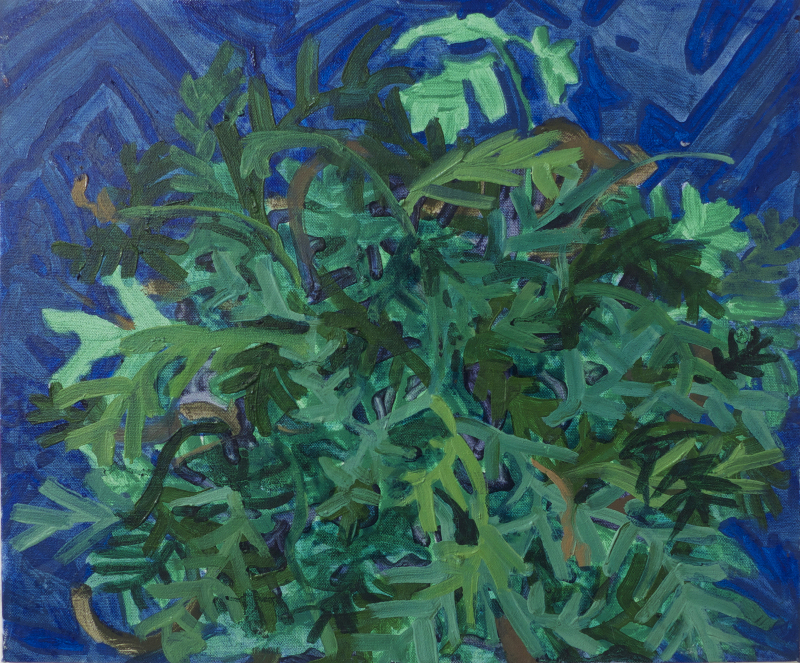 Fern,  oil and tempera on canvas, 14 x 16 inches, 2014