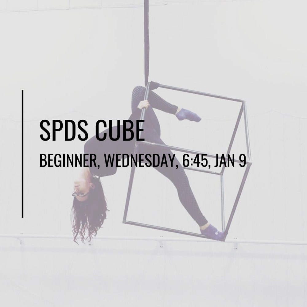 SPDS CUBE.jpg