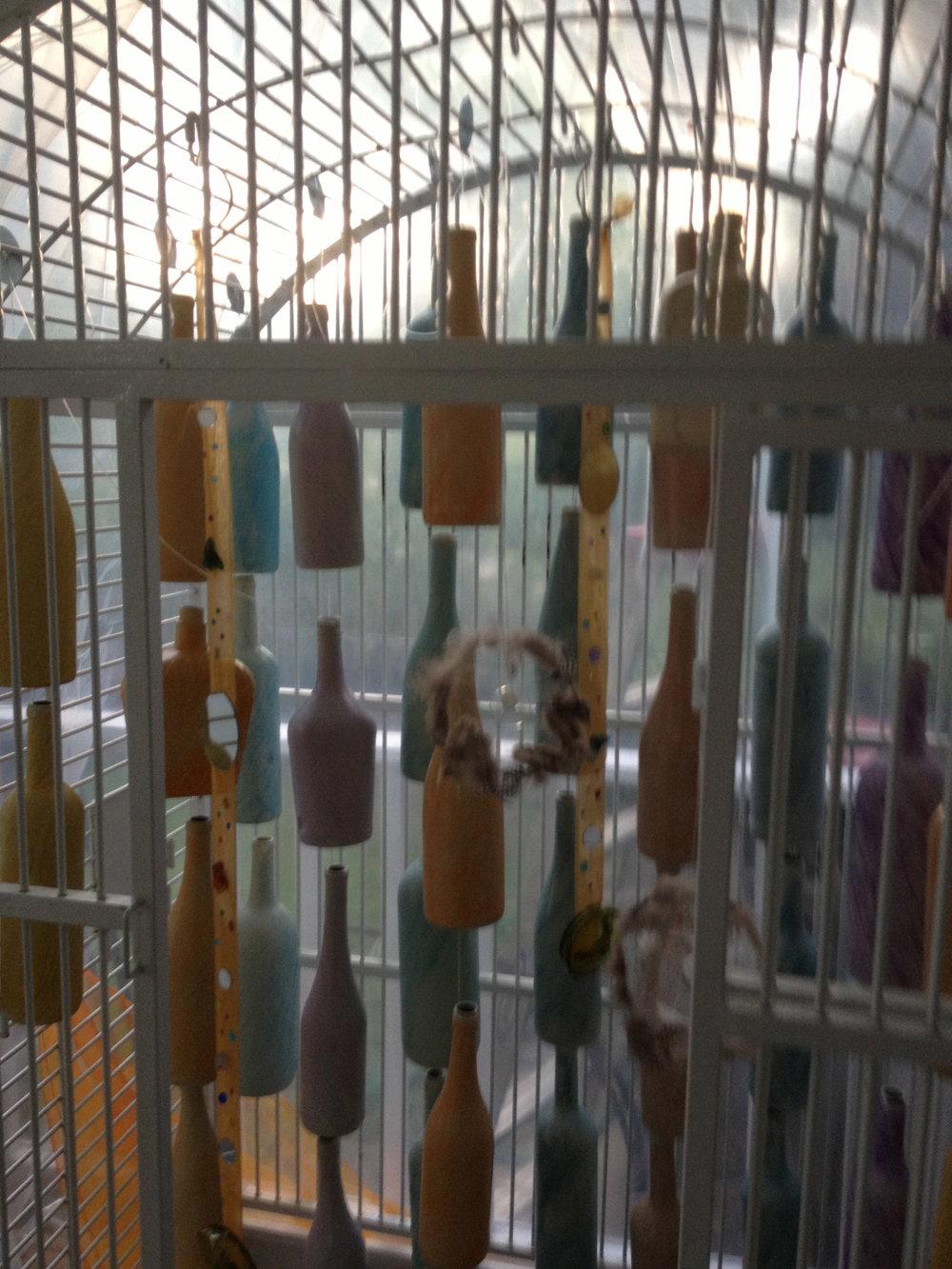 bottle cage