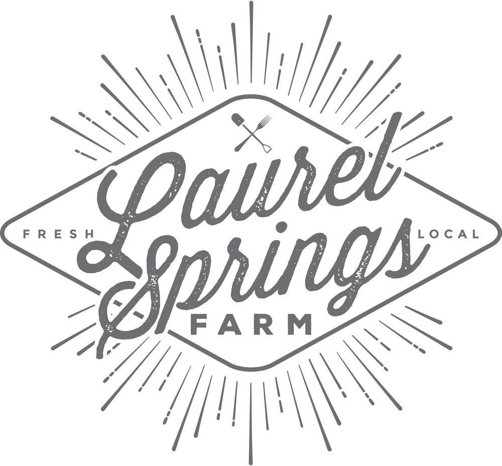 LAURELSPRINGS_MAIN_LOGO_F.jpg