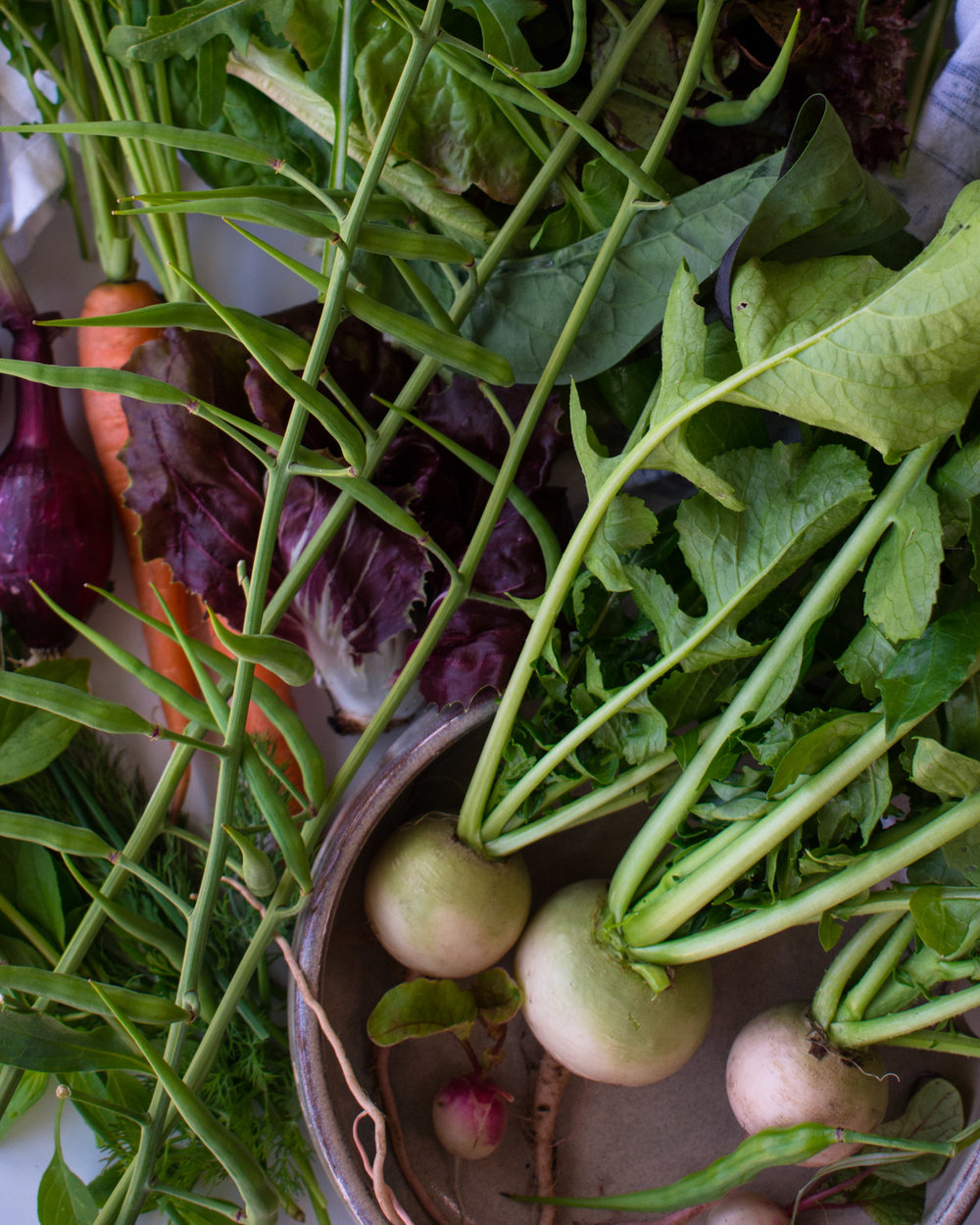 Radishes, herbs and greens.