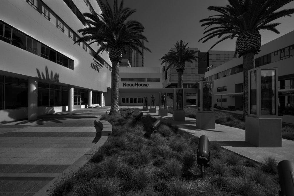 NeueHouse, LA -