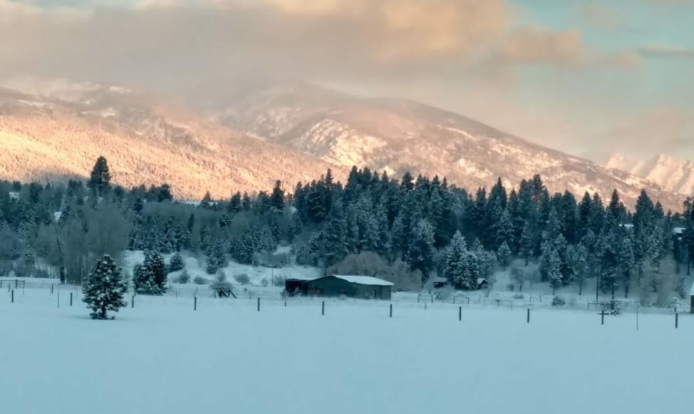 Montana Mountains.jpg